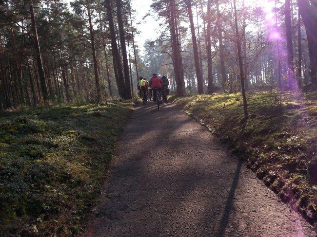lasy wokół Druskiennik